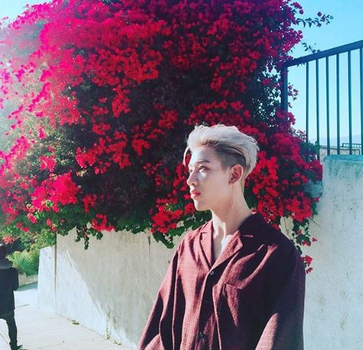 BamBam Net Worth, Career, Salary