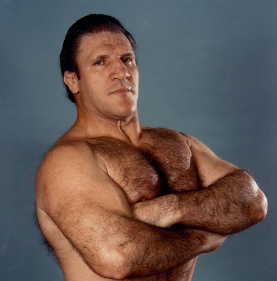 Bruno Sammartino Net Worth, Career, Income