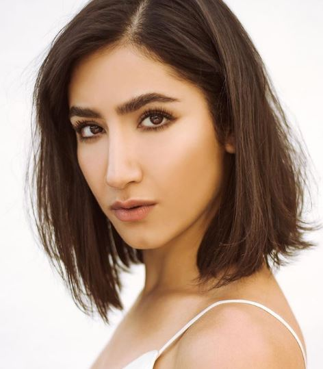 Nikohl Boosheri Net Worth, Salary, Income