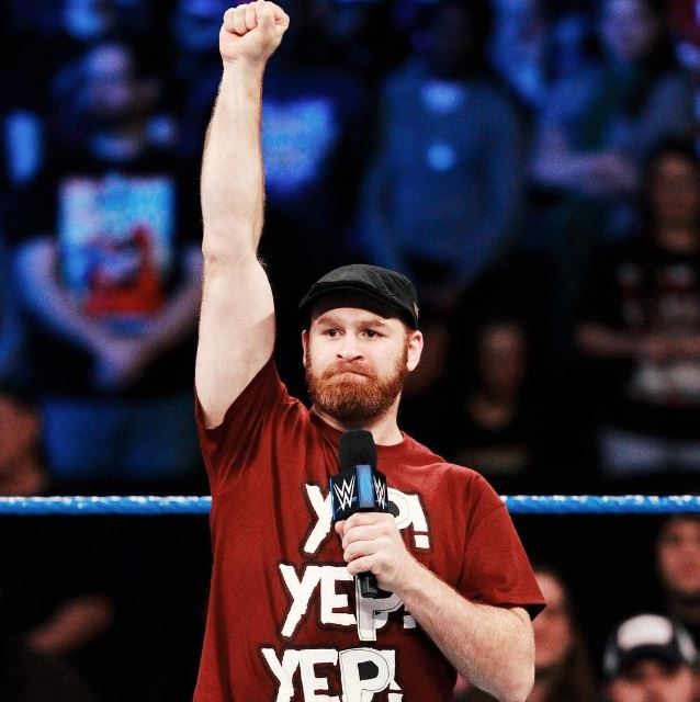 Sami Zayn Net Worth, Salary, Income