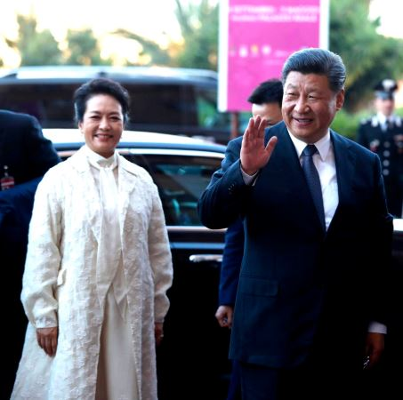 Peng Liyuan Car, Net Worth