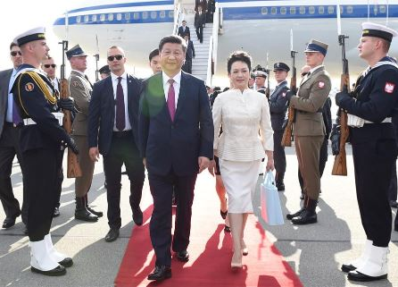 Peng Liyuan Plane, Net Worth