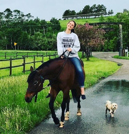 Laurel Stucky Horse, Car, House, Net Worth