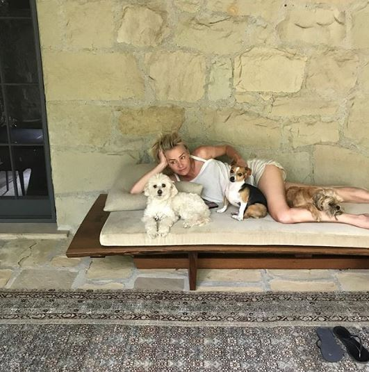 Portia de Rossi Net Worth Salary Income