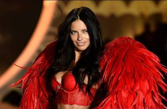 Adriana Lima Net Worth, Salary, Income