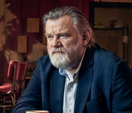 Brendan Gleeson Net Worth, Salary, Income