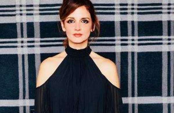 Sussanne khan Income, Net Worth