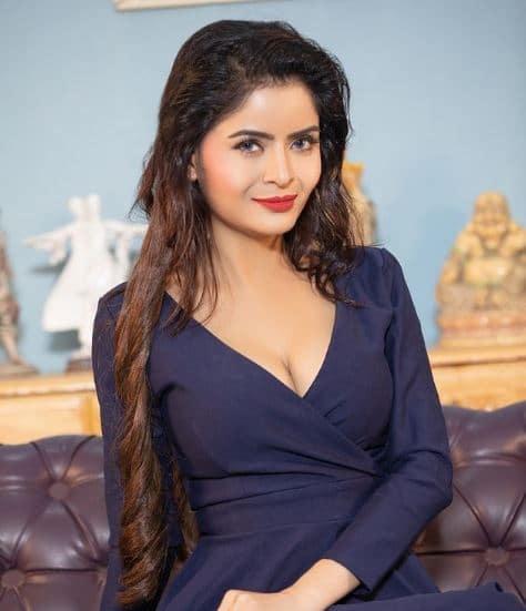 Gehana Vasisth Dating, Boyfriend, Married